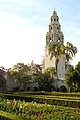 Balboa Park's Bell Tower Over the Alcazar Garden.jpg