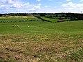 Ballymully Townland - geograph.org.uk - 520883.jpg