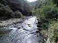 Banat,Nera Canyon - panoramio (17).jpg