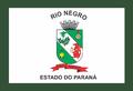 Bandeira Rio Negro - PR.png