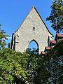 Barfüsserkirche Erfurt (24).jpg
