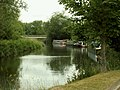 Barges on the River Stort - geograph.org.uk - 1347632.jpg