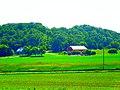 Barn on Enchanted Valley Road - panoramio.jpg