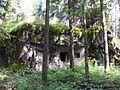 Bartošovice v Orlických horách, R-S 64 (rok 2010; 04).jpg