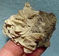 Barytocalcite-179406.jpg