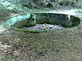 Bassin extérieur des bains de la Caille.jpg