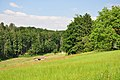 Batzberg - Dachsegg 2010-06-23 17-29-06.JPG