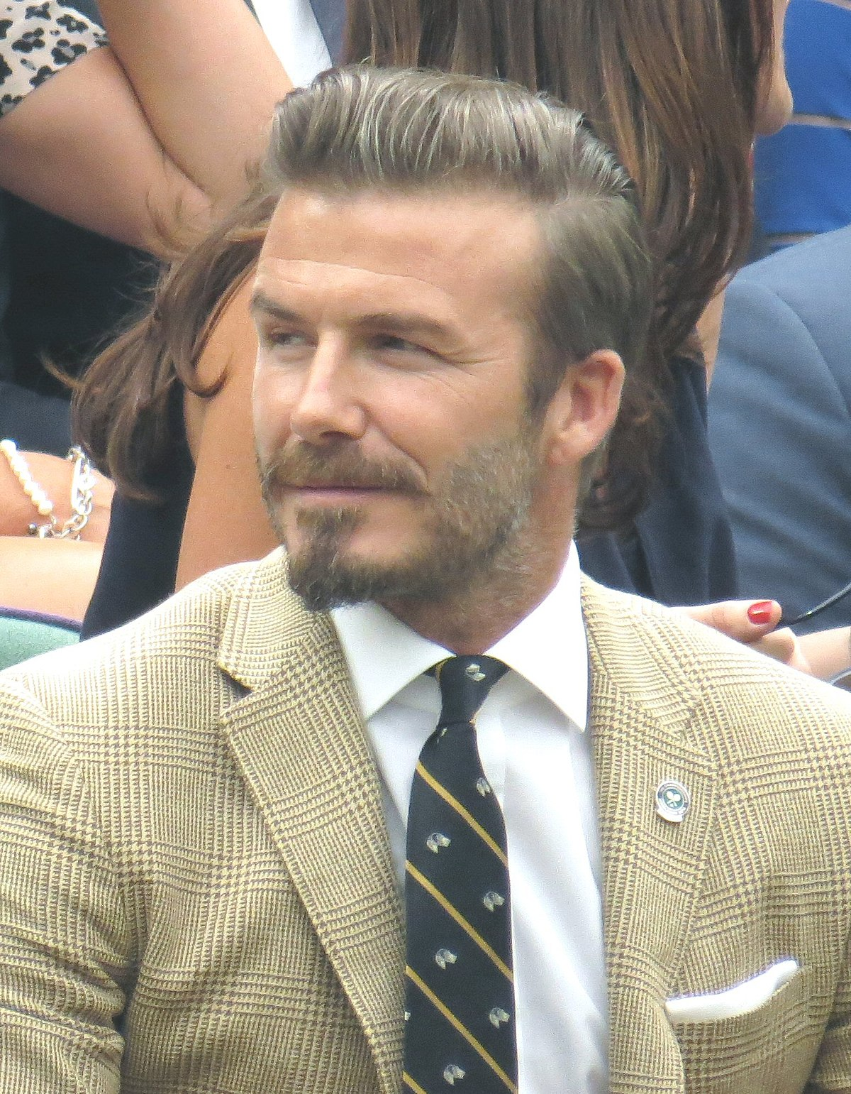 David beckham wikipedia for David beckham