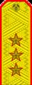 Belarus MIA—01 Colonel General rank insignia (Golden).png