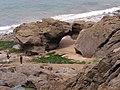 Belles roches à marée basse - panoramio.jpg