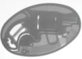 Belt buckle revolver on x-ray screen.png