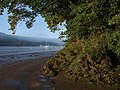 Bend in tidal road - geograph.org.uk - 1510220.jpg