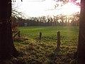 Bentlager Wald - panoramio.jpg