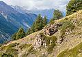 Bergtocht van Gimillan (1805m.) naar Colle Tsa Sètse in Cogne Valley (Italië). Zicht op rotsformatie en dal.jpg