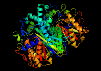 Ketoacyl synthase - Crystal structure of beta-ketoacyl-ACP synthase II (FabF) from Yersinia pestis