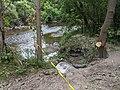 Betty Sutherland Trail - 20200816 - 03.jpg
