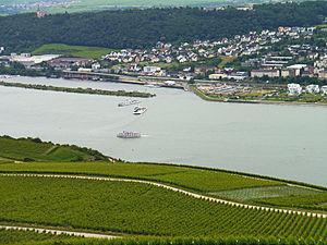 Bingen-Ruedesheim-Faehren-2012-06-693.jpg
