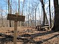 Bird-mountain-campsite-tn1.jpg