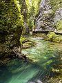 Blejski Vintgar, Slovenia (5).jpg