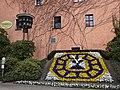 Blumenuhr mit Porzellanglockenspiel in Zittau.JPG