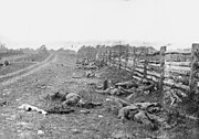 Dead Confederate soldiers from Starke's Louisiana Brigade, on the Hagerstown Turnpike, north of the Dunker Church.