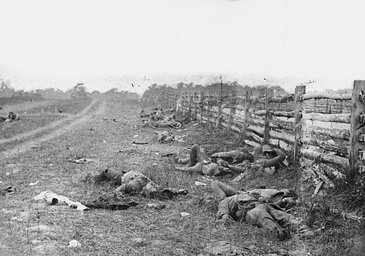 Photograph of the field at Antietam, American Civil War. Confederate dead by a fence at the Hagerstown Turnpike