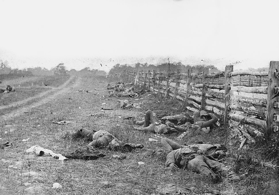 Bodies on the battlefield at antietam