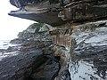 Bondi Beach NSW 2026, Australia - panoramio (7).jpg
