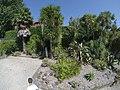 Botanical Garden of Porto in 2017 (44).jpg