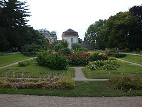 Image illustrative de l'article Jardin botanique de l'université de Vienne