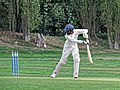 Botany Bay CC v Rosaneri CC at Botany Bay, Enfield, London 13.jpg