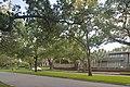 Boulevard Oaks District.jpg