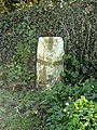 Boundary Stone - geograph.org.uk - 1255726.jpg