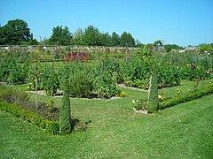 jardin potager en hauteur