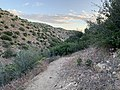 Bradford Ridge Trail to Deep Creek Hot Springs.jpg