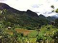 Brasil Rural - panoramio (16).jpg