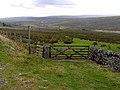Bridleway in upper Teesdale - geograph.org.uk - 1506642.jpg