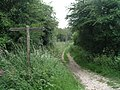 Bridleway on top of the South Downs - geograph.org.uk - 1018731.jpg