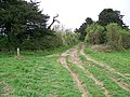 Bridleway to Breamore - geograph.org.uk - 1276484.jpg