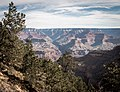 Bright Angel Trail, South Rim, Grand Canyon (32787112395).jpg