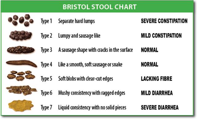 Bristol Stool Chart Cake Recipe