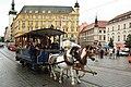 Brno, nám. Svobody, BMUE 2012, koňka č. 6 (02).jpg