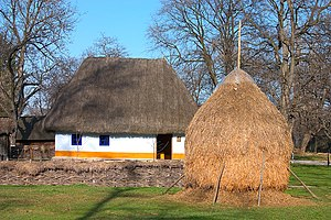 Vernacular architecture of the Carpathians - A house with a thatched roof and limewashed plaster walls from the Dimitrie Gusti National Village Museum in Bucharest, Romania. The use of plaster and straw suggests it is not from the highlands of the Carpathians proper, but a nearby valley or plain.