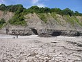 Bull Cliff and Bullcliff Rocks - geograph.org.uk - 836554.jpg