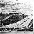 Bundesarchiv Bild 195-1721, Rheinbefliegung, Helmlingen - Leutesheim.jpg