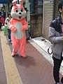 Bunny in the street (4356091526).jpg