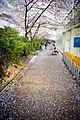 Burrard Station (16196093244).jpg