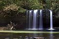 Butte Creek Falls.jpg