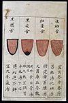 C14 Chinese tongue diagnosis chart Wellcome L0039595.jpg