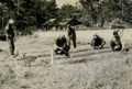 CASA Soldiers Planting Oriental Vegetables.PNG